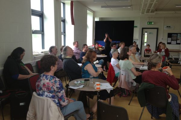 green-foundation-ireland-audience-group-tables