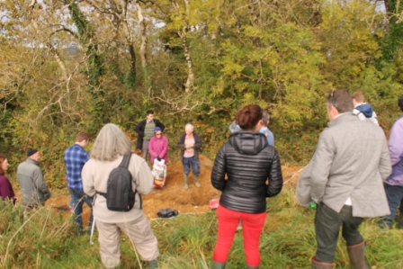 green-foundation-ireland-crowding-digging