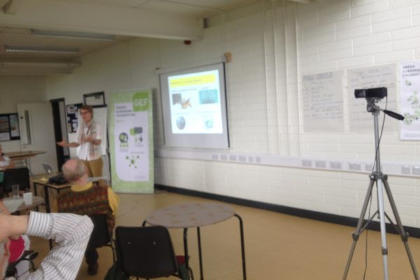 green-foundation-ireland-empty-seminar-stage