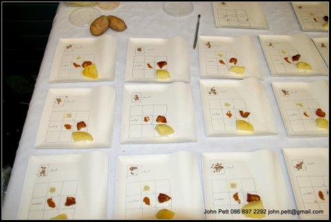 green-foundation-ireland-food-table