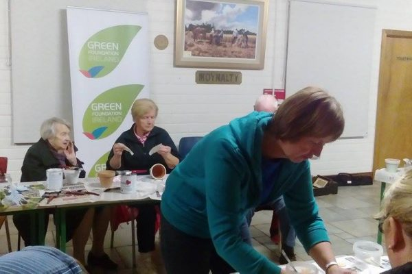 green-foundation-ireland-painting-crowd