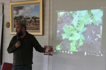 green-foundation-ireland-presentation
