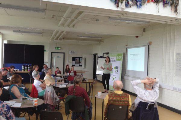 green-foundation-ireland-seminar-room