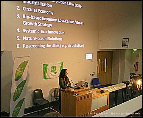 green-foundation-ireland-woman-presenting-slide